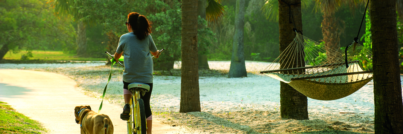 Student biking with dog along South Beach