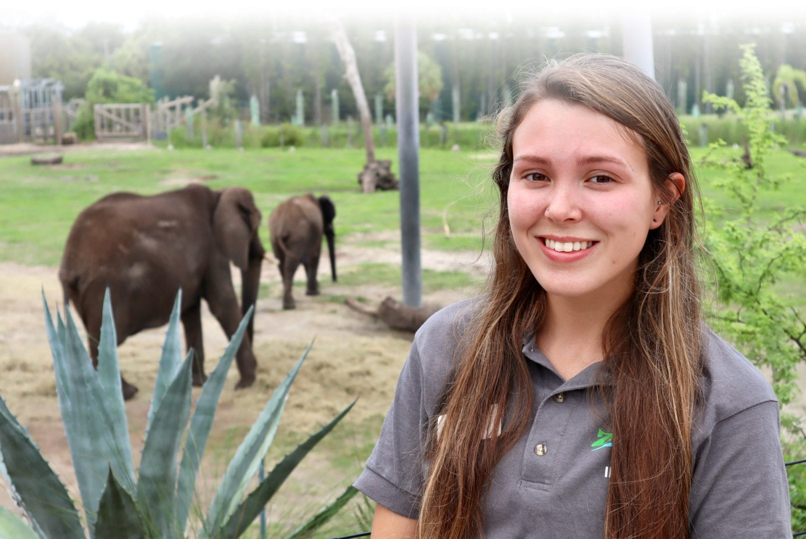 Animal Studies major at zoo with elephant walking