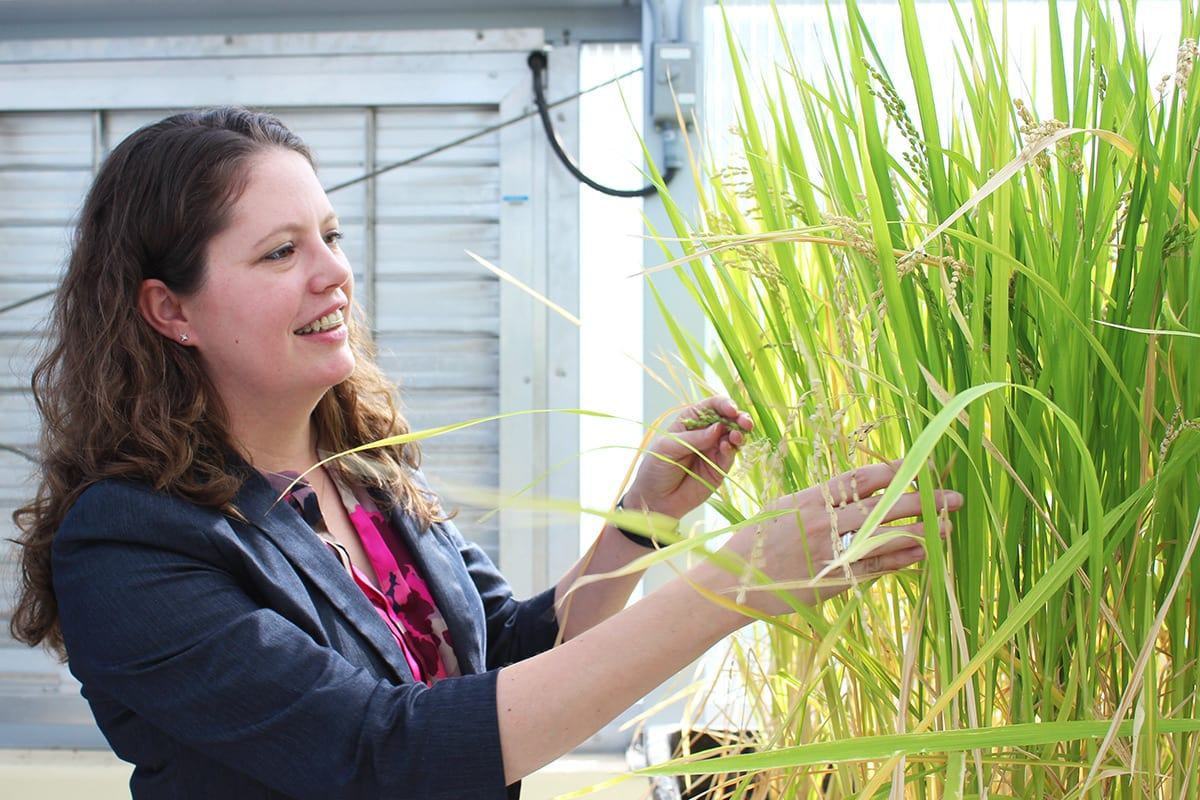 Assistant Professor of Biology Liza Conrad inspecting plant