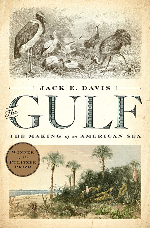 Cover of The Gulf: The Making of An American Sea