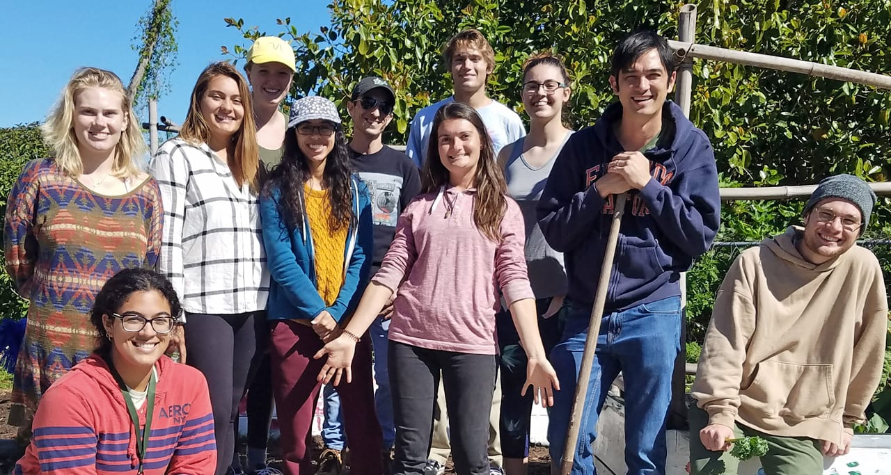 Eckerd students participate in Edible Peach Patch