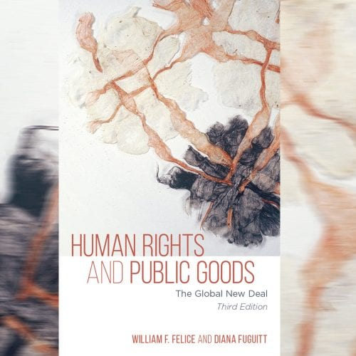 Book cover: Human Rights and Public Goods: The Global New Deal