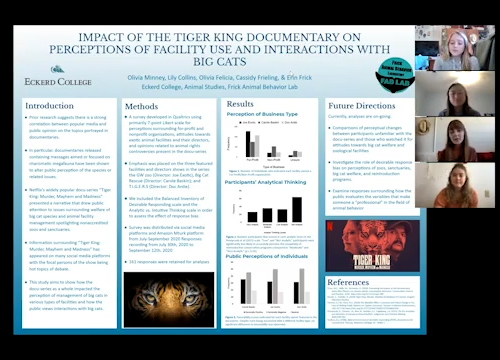 Screen capture from research presentation