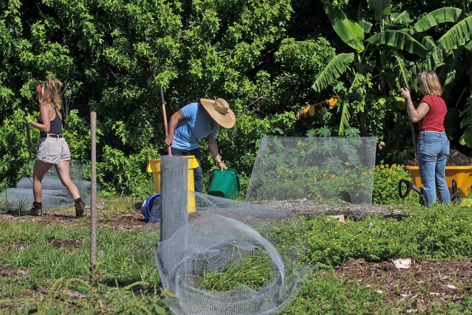 Farm manager and students working in the garden at Eckerd College