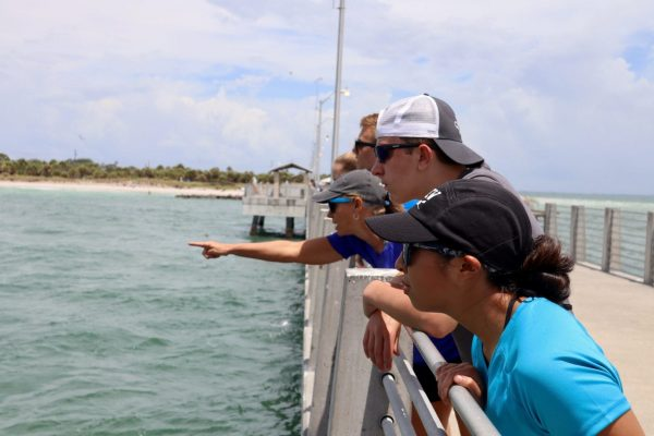 Pre-College students on a pier, looking at something in water