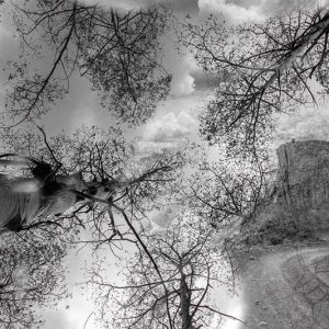 Caley Hanse '19, untitled digital photograph