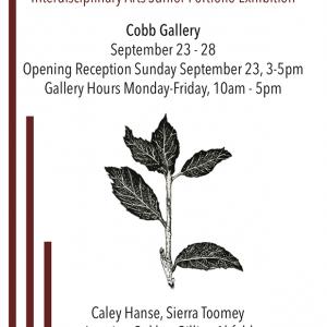 Sierra Toomey '19, poster