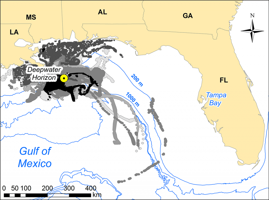 Map showing the location of the Deepwater Horizon platform in relation to Tampa Bay