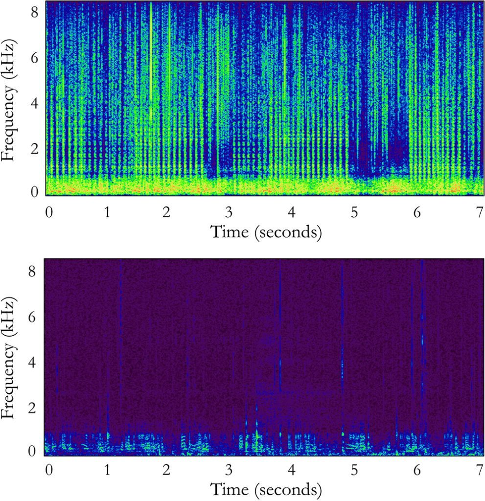 Spectrograms of marine landscape