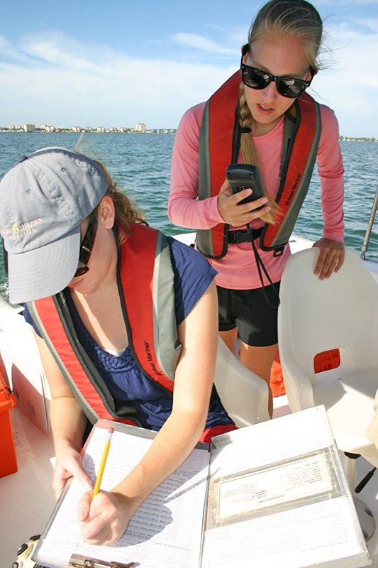 Students recording dolphin data