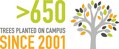 More than 650 trees planted on campus since 2001