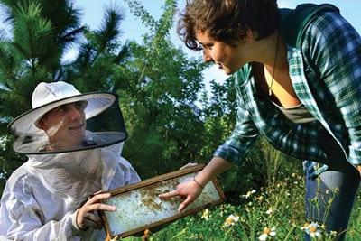 Student beekeeping club