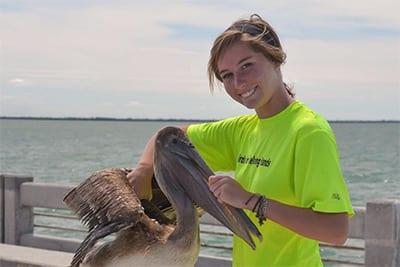 Eckerd student saving a brown pelican from entanglement