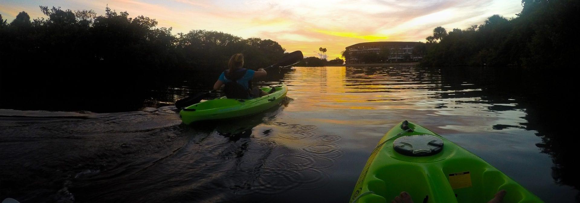 Kayaking along the Bay